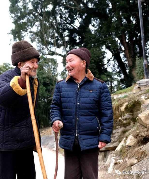 重庆一老人家门口发现2棵千年金丝楠,价值8500万